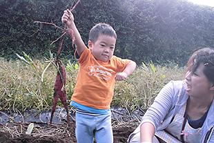 親子で楽しむ屋久島の旅。のイメージ